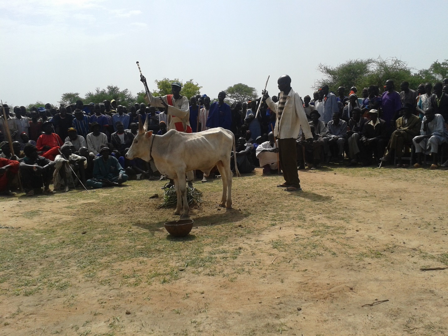 Traditional reconciliation performance during peace dialogue between Tonj East and Tonj North communities in 2014